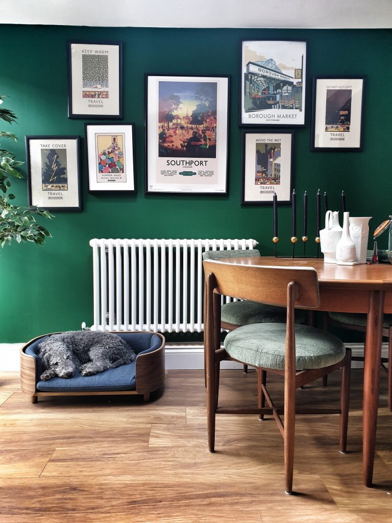 Green walls, teak dining table and chairs, small grey dog in dog bed.
