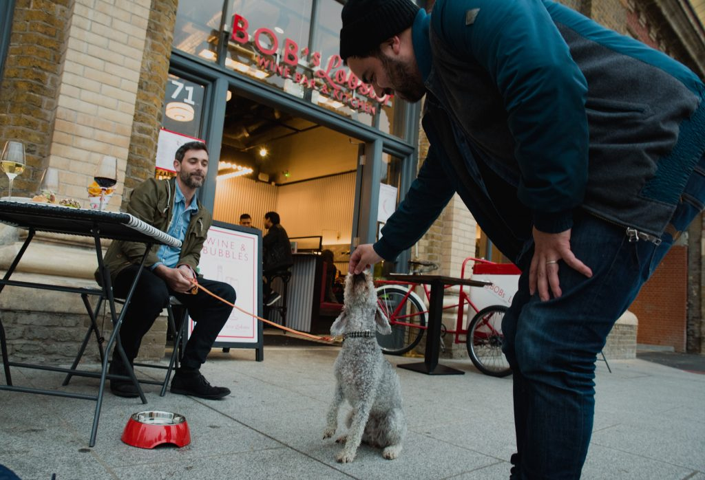 a man in jeans, a jacket and a beanie hat feeds a small grey dog while another man in a green jacket and blue shirt sits at a cafe table and holds the dogs lead.