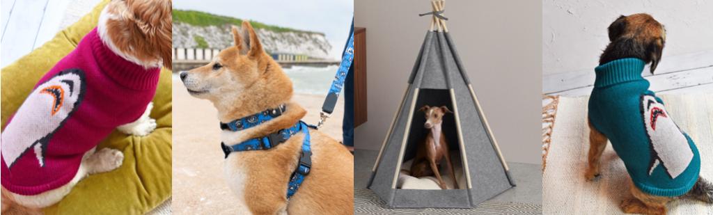 a dog in a pink shark jumper, a dog in a blue harness, a dog in a teepee and a dog in a blue shark jumper