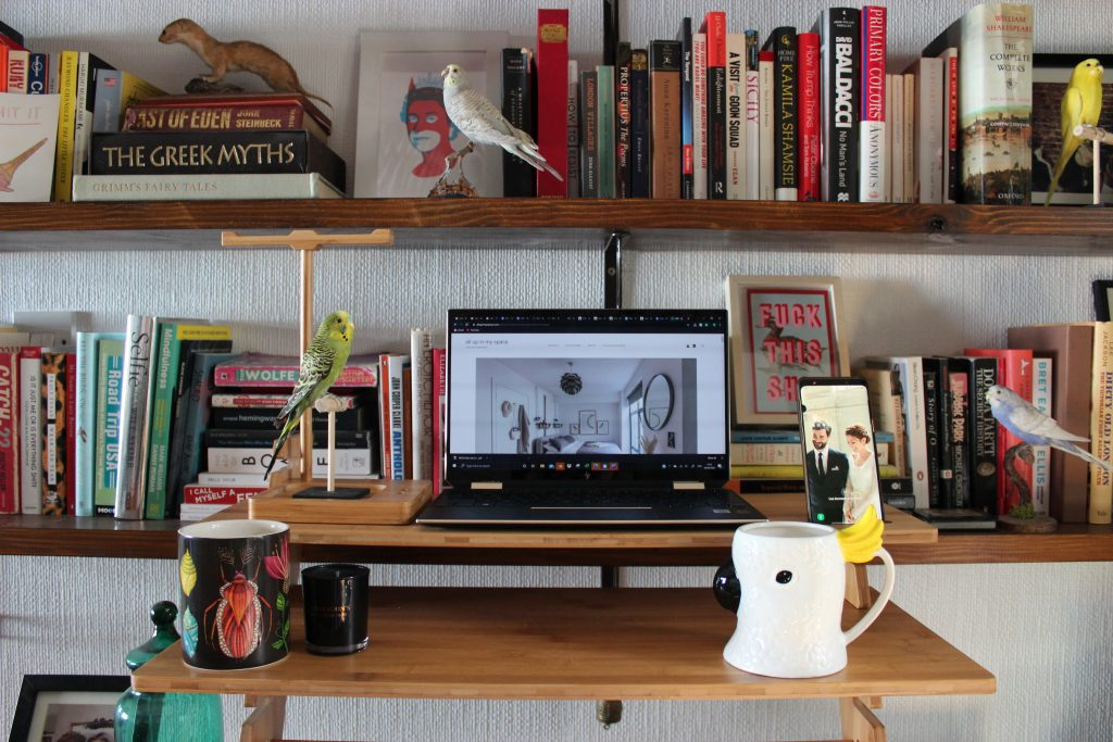 A Colourful home office with a bookshelf full of multi coloured books, a vintage wooden desk with standing desk adaptor with a laptop, phone, cockatoo mug, taxidermy books and candles on it.