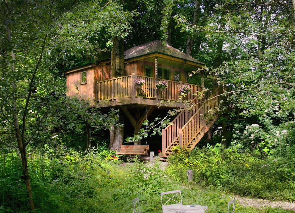 A wodden treehouse nestles into lots of lush greenery